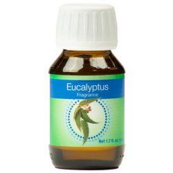 eucalyptus-single